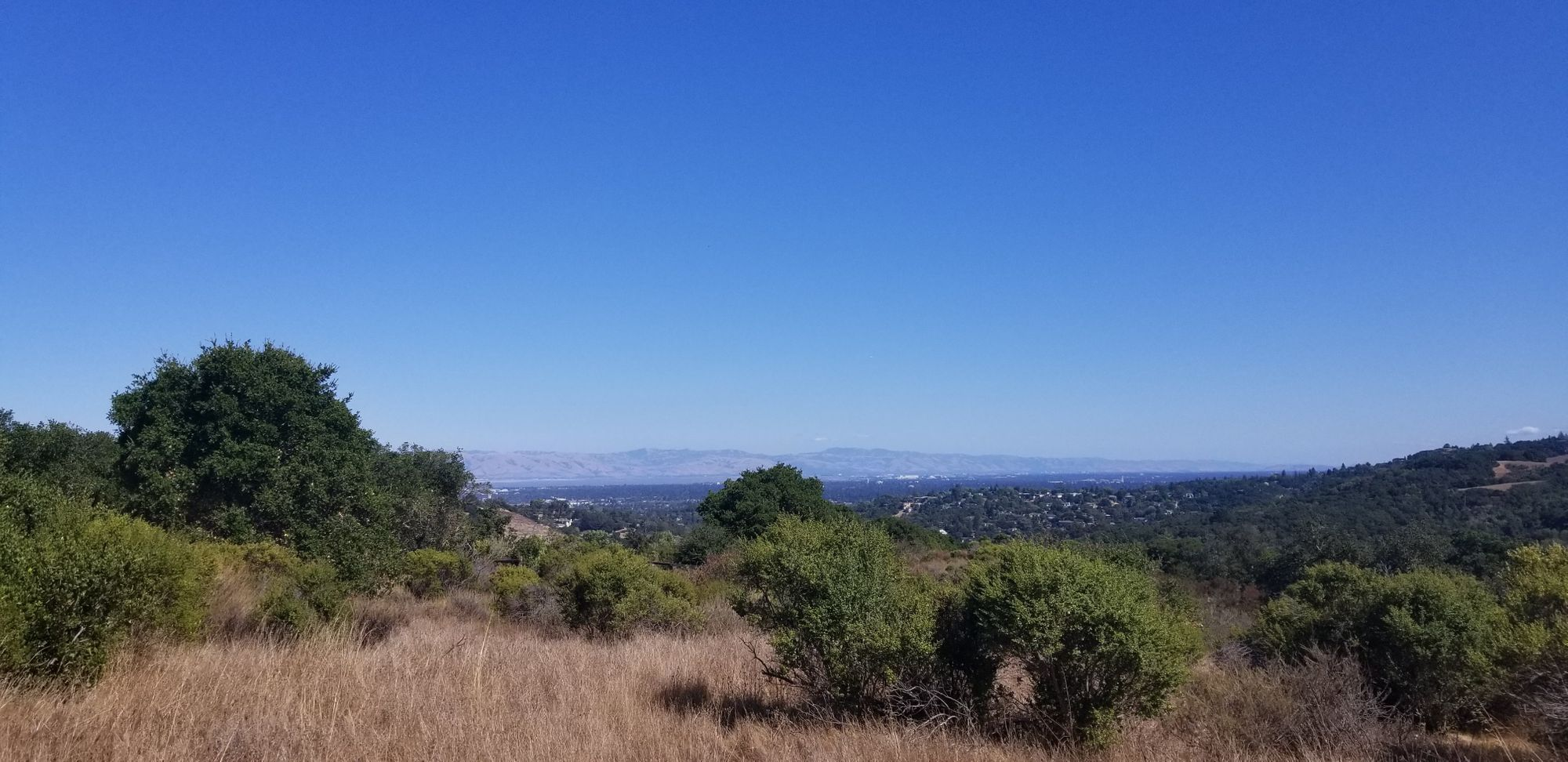 The bay from Pulgas Ridge PReserve